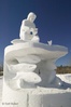 ice-sculpture-molds_6135.jpg